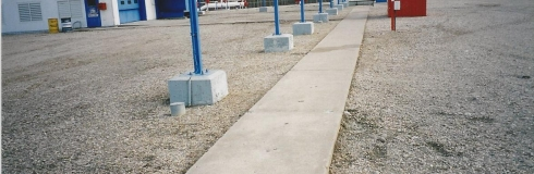 Plant Sidewalk 2